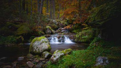 Waterfall, Autumn, Foliage, Forest, Woods, Greenery, Rocks, Green Moss, Long exposure, Water Stream, Landscape, Scenery, 5K