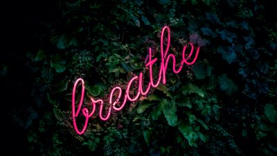 Breathe, Neon sign, Green background, Green leaves, Pink