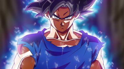 Goku Mastered Ultra Instinct, Dragon Ball Super, 5K