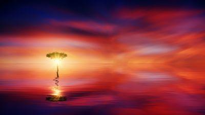 Tree, Seascape, Ocean, Sunrise, Dawn