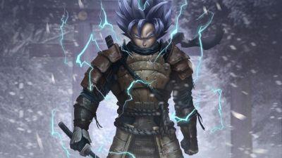 Goku, Samurai, Artwork, Dragon Ball Z