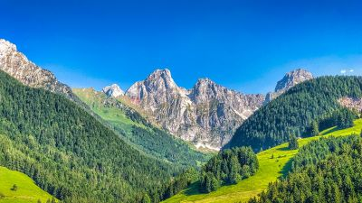 Alps mountains, Mountain range, Summer, Sunny day, Forest, Clear sky, Blue Sky, Landscape, Switzerland