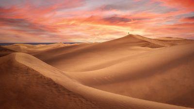 Desert, Sand Dunes, Alone, Sunset, Evening, 5K