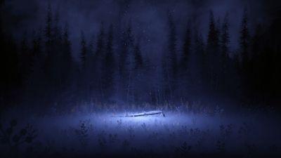 Light, Night, Forest, Winter, Foggy, Dark