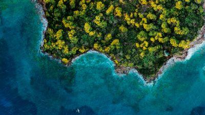 Fantasy Island, Aerial view, Forest, Ocean, 2020, 5K