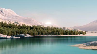 Windows 11, Forest, Landscape, Scenery, Sunrise, Stock, Day light