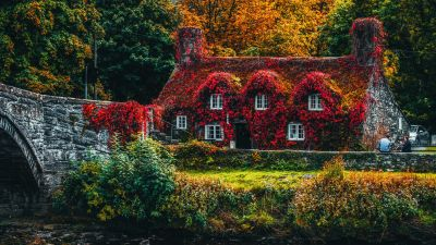 House Covered by Trees, Autumn trees, Bridge, Beautiful, Old House, Seasons, Landscape, Scenery, 5K