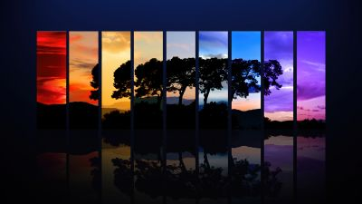 Tree, Sunset, Daylight, Evening, Night, Twilight, Spectrum, Silhouette, Morning, Sunrise, Reflection, Dark