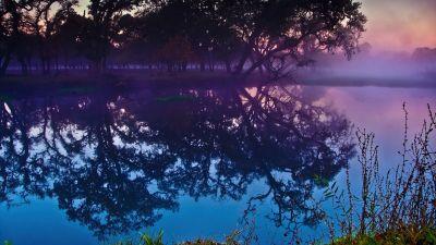 Laguna de Santa Rosa, Trees, Lake, Reflections, Colorful, Sunset, California, Body of Water