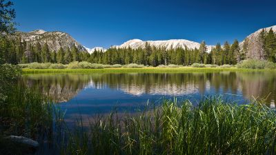 Lake, Mountains, Forest, Sunny day, Summer, Reflections, Body of Water, Scenery, Landscape, Blue Sky