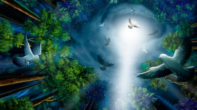 Midnight, Forest, Pigeons, Light, Illustration, Paint
