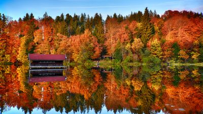 Autumn trees, Forest, Mirror Lake, Reflection, Wooden House, Landscape, Scenery, 5K, 8K