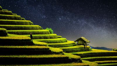 Terrace farming, Rice fields, Agriculture, Country Side, Landscape, Greenery, Paddy fields, Starry sky, Night time, 5K, 8K