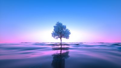 Tree, Neon, Body of Water, Reflection, Clear sky, Pink, Blue