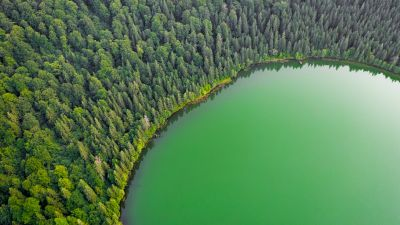 Green Lake, Green Trees, Aerial view, Forest, Landscape, Woodland, Scenery