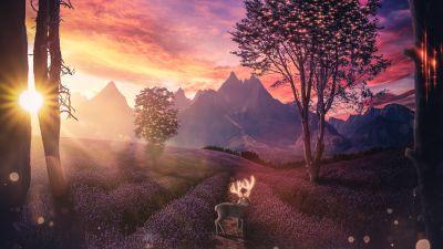Deer, Lavender fields, Sunset, Landscape, Surreal, Aesthetic