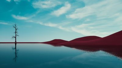 Lone tree, Lake, Dry fields, Clear sky, Reflections, Landscape, Summer, Fusion