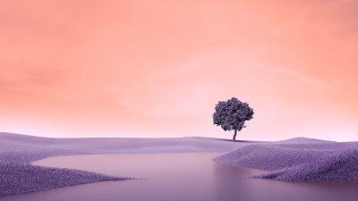 Lone tree, Landscape, Spring, Lake, Surreal, Digital composition, Aesthetic