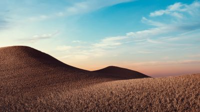 Dry fields, Sunny day, Summer, Landscape