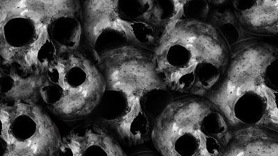 Skulls, Scary, Monochrome, 5K