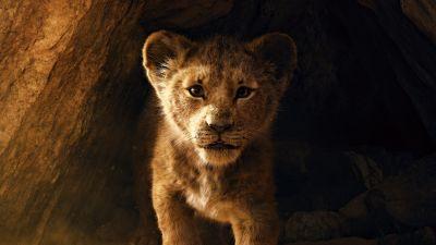 The Lion King, Simba, Lion cub, 5K