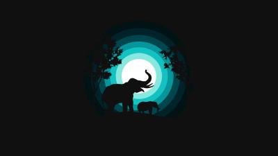 Elephant, Elephant cub, Silhouette, Night, Teal, Black background