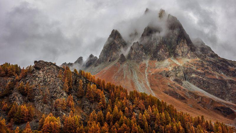 Mountains, Forest, Autumn, Foggy, Peak, Grisons, Switzerland, 5K, Wallpaper