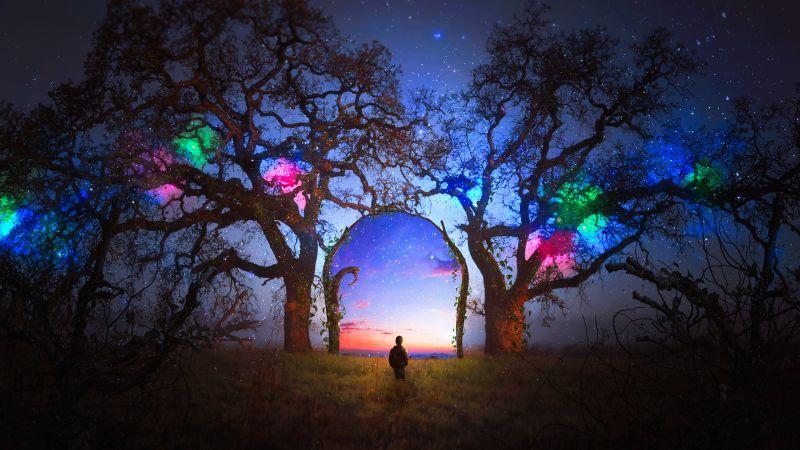 Surreal, Dream, Alone, Doorway, Spectrum, Portal, Wallpaper