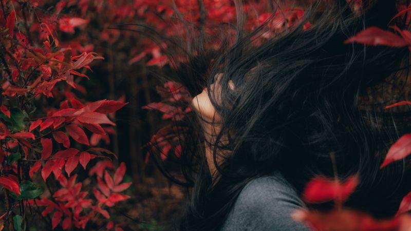 Asian Girl, Woman, Mood, Red leaves, Wallpaper