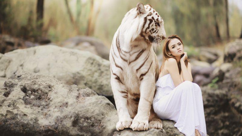 White tiger, Asian Woman, Friends, Wild, Dream, Wallpaper