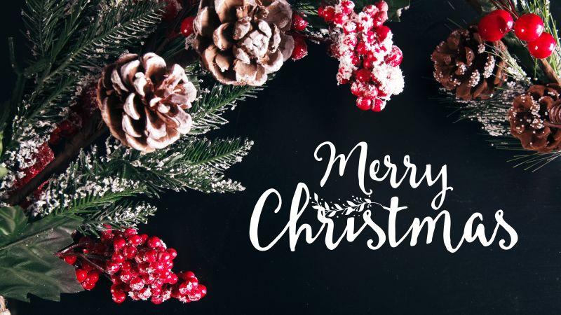 Merry Christmas, Decoration, Xmas background, Fruits, Frozen, 5K, Wallpaper