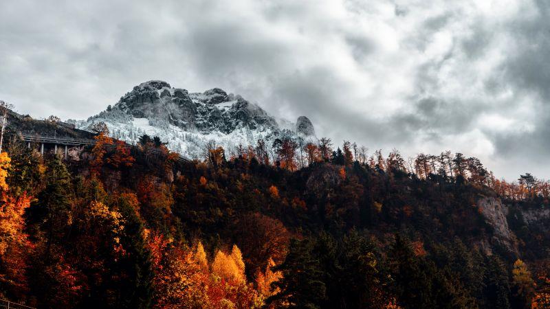 Alps, Autumn, Alps mountains, Forest, Wilderness, Landscape, Switzerland, 5K, Wallpaper