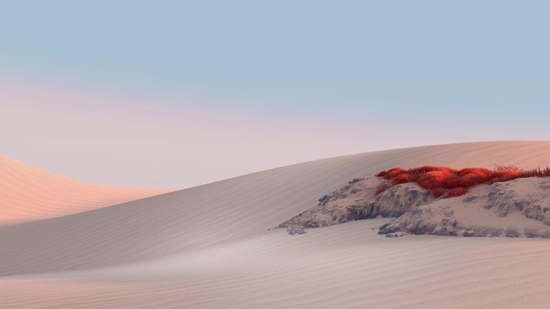 Landscape, Desert, Sand dunes, Clear sky, Microsoft Surface, Stock, Wallpaper