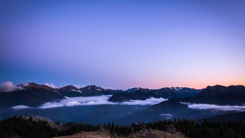 Olympic National Park, Sunset, Blue mountains, Washington, 5K, Wallpaper