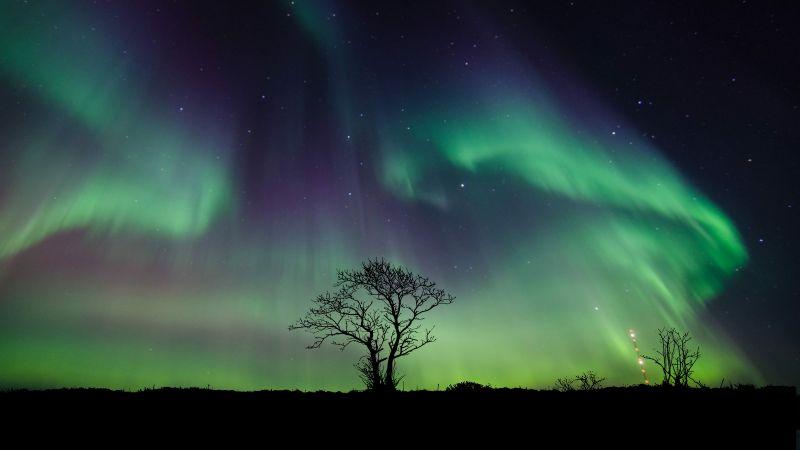 Aurora Borealis, Northern Lights, Night, 5K, Wallpaper
