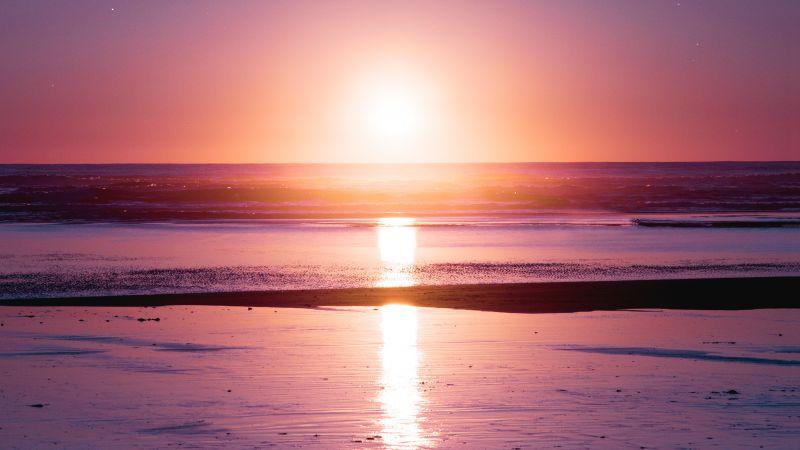 Sunset, Seascape, Reflection, Beach, Seashore, Dawn, Kalaloch, Wallpaper