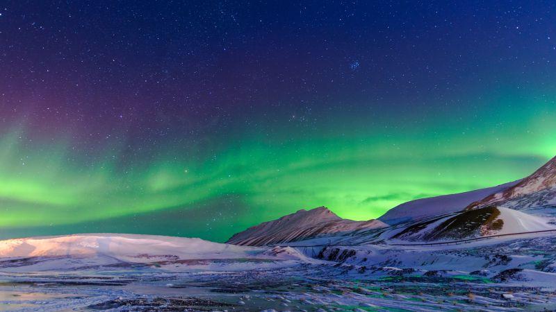 Northern Lights, Aurora Borealis, Winter, Norway, 5K, Wallpaper