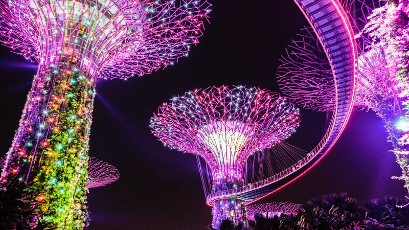 Supertree Grove, Lighting, Purple, Colorful lights, Garden, Night, Singapore, 5K, Wallpaper