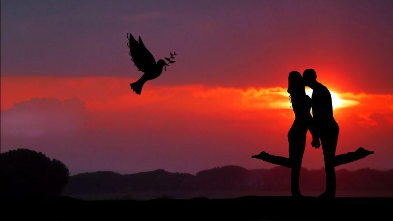 Couple, Together, Romantic, Sunrise, Dove, Silhouette, Wallpaper