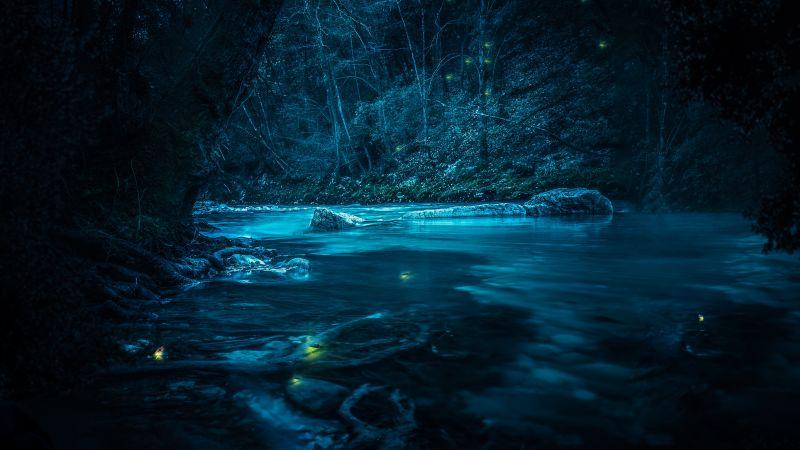 Forest, River, Night, Dark, Magical, Crescent Moon, Blue, Fairies, Wallpaper