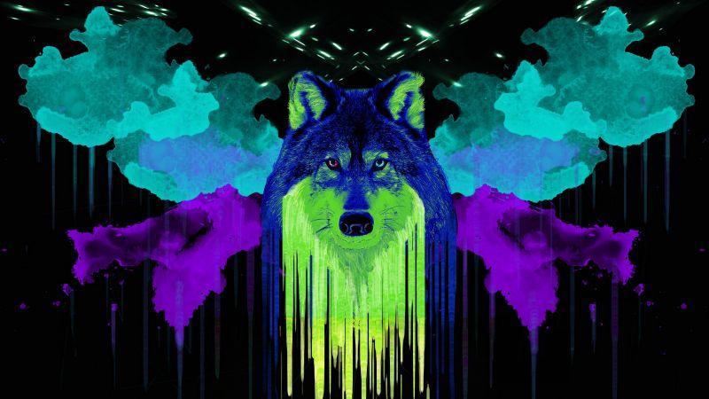 Wolf, Artwork, Neon, Black background, Watercolors, Painting, Wallpaper
