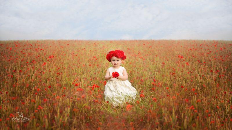 Cute Girl, Red flowers, Garden, White Dress, Cute eyes, 5K, Wallpaper