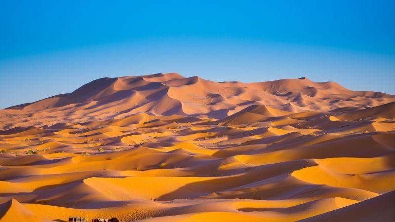 Sahara Desert, Merzouga, Morocco, Sand Dunes, Blue Sky, Sunny day, 5K, Wallpaper