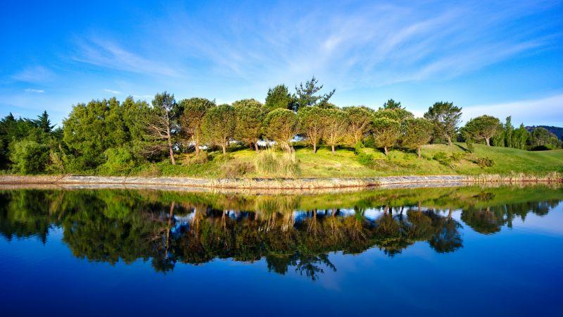 Green Trees, Blue Sky, Golf course, Pond, Water, Reflection, Green, Landscape, 5K, 8K, Wallpaper