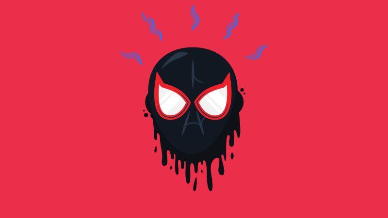 Miles Morales, Spider-Verse, Magenta background, Red background, Wallpaper