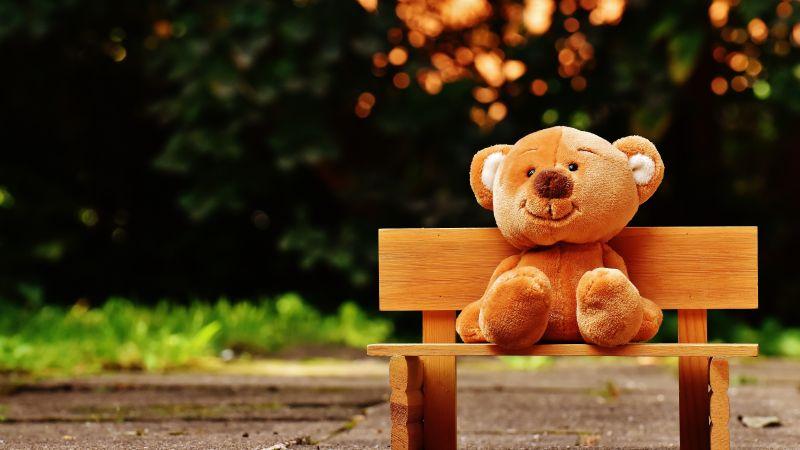 Teddy bear, Park bench, Soft toy, Wooden bench, Evening, Cute toy, 5K, Wallpaper