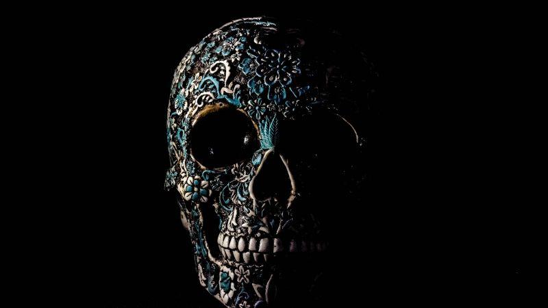 Skull, Human, Skeleton, Black background, Art, 5K, Wallpaper