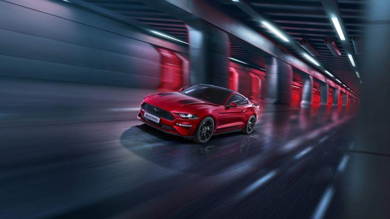 Ford Mustang EcoBoost SIP, 2020, 5K, 8K, Wallpaper