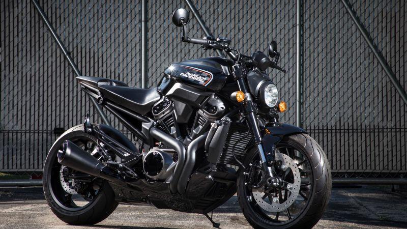 Harley-Davidson, Cafe racer, Race bikes, Black Motorcycle, Fence, 5K, Wallpaper