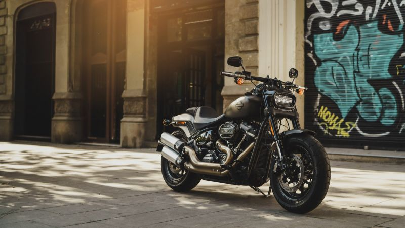 Harley-Davidson Fat Bob, Grey Motorcycle, Sun light, Day time, 5K, 8K, Wallpaper
